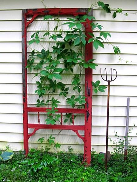 screen-door-garden-trellis-houzz