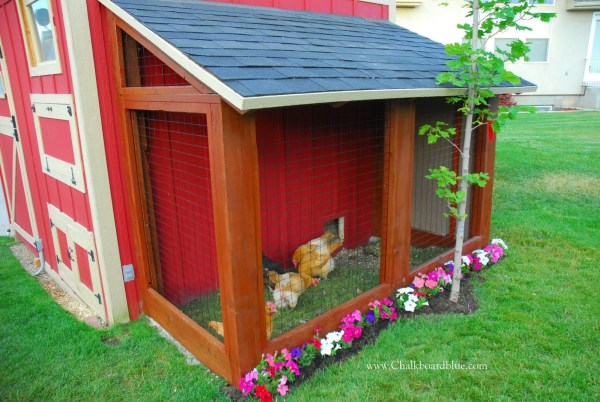 DIY Chicken Coop with Storage Shed by Chalkboardblue featured on Remodelaholic