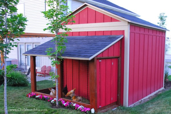 DIY Chicken Run and Storage Shed by Chalkboardblue featured on Remodelaholic