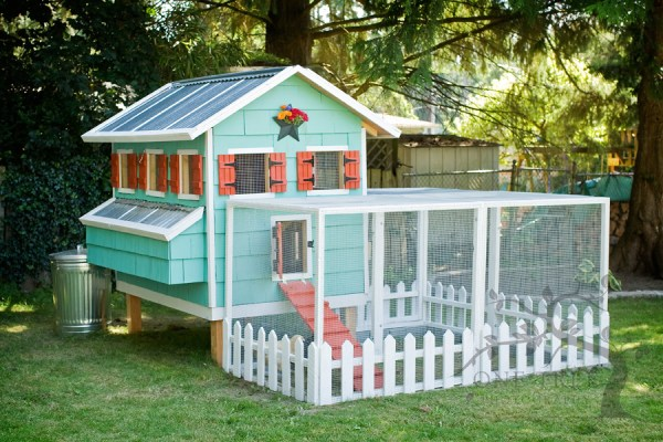 by One Tree Photography - love the color scheme on this cute chicken coop