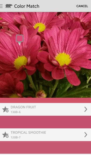 Behr Color Match - Free Android DIY App to Pick a Paint Color from a Photo @Remodelaholic