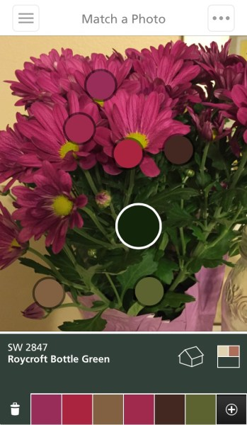 Sherwin-Williams ColorSnap - Free App to Choose Paint Color from a Photo @Remodelaholic