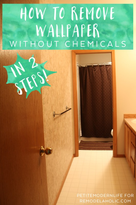 Remove Wallpaper In 2 Easy Steps WITHOUT Chemicals And Find Out How To Prep For