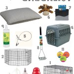 Amazing items and tips to be set for your new puppy!