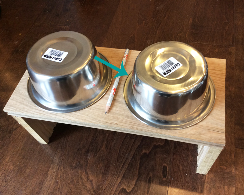 How to Make a Dog or Cat Feeder