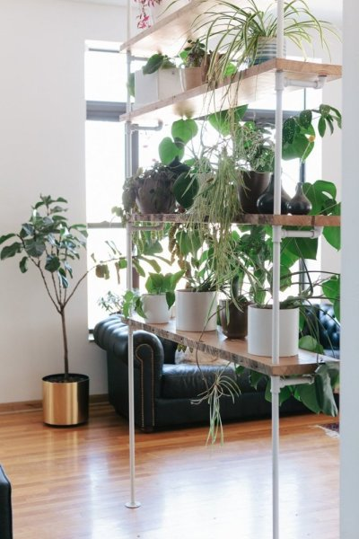plant shelf room divider2