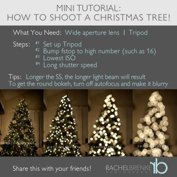 how to photograph a christmas tree
