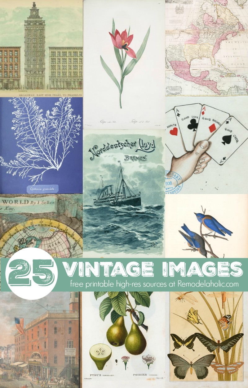 picture relating to Free Printable Vintage Images referred to as Remodelaholic 25+ Cost-free Printable Basic Illustrations or photos