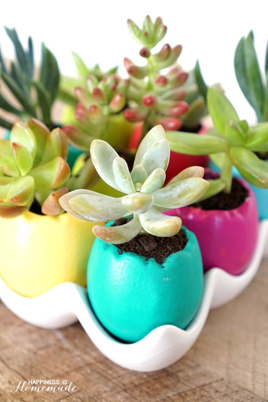 Easter egg succulent planters Happiness is Homemade