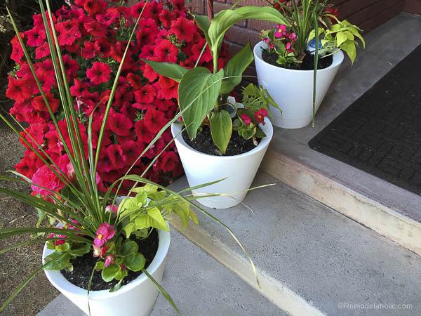 Nimbus Pot Self Watering pots @remodelaholic-2