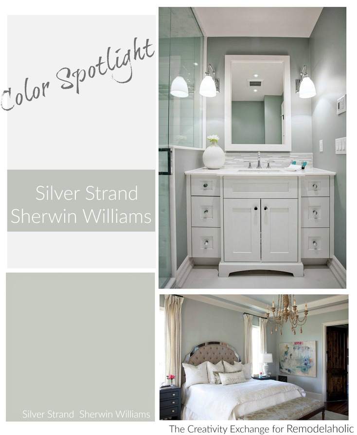 Silver Strand Paint Reviews