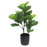 Modern Coastal Bedroom Fiddle Leaf Fig
