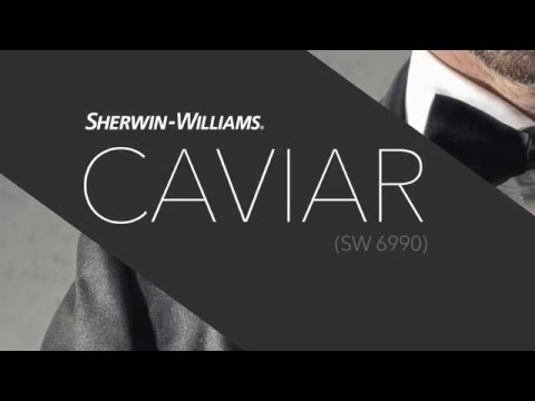 Sherwin Williams Caviar. Color Trends For 2017