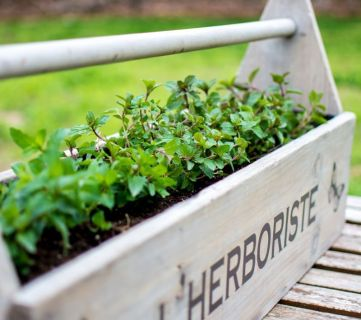 Toolbox To Planter 028
