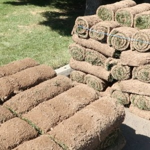 Pallets Of Rolled Sod #remodelaholic How Much Sod Should I Order