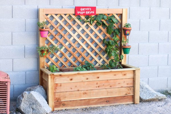 DIY Vegetable Garden Ideas Kids Garden Box And Trellis, Addicted2DIY