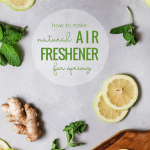 How To Make Your House Smell Fresh For Spring, Lemon Mint Stove Top Potpourri Remodelaholic
