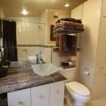 Mid Century Modern Bathroom Reno Before & After