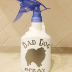 "DIY ""Bad Dog Spray"" Bottle"