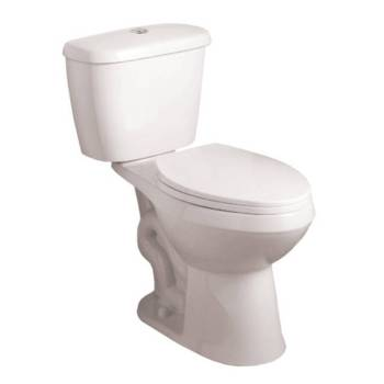 Lowe's AquaSource Dual Flush Toilet