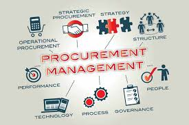 Developing and Managing Procurement Processes