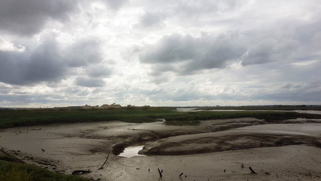 Cliffe Creek at low tide