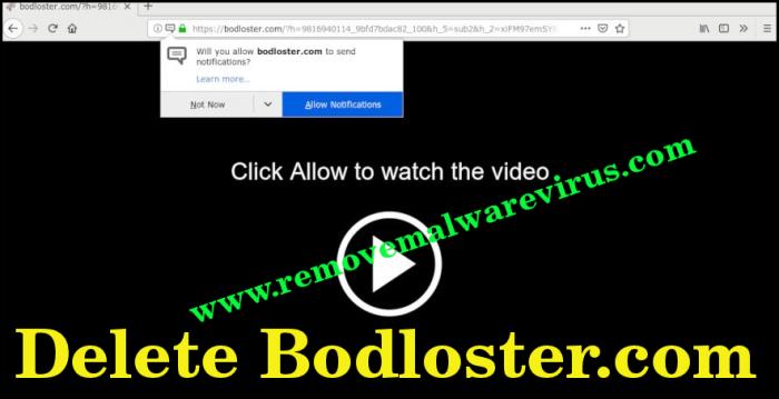 Löschen Sie Bodloster.com