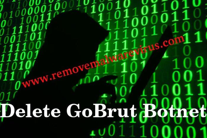 Löschen Sie GoBrut Botnet
