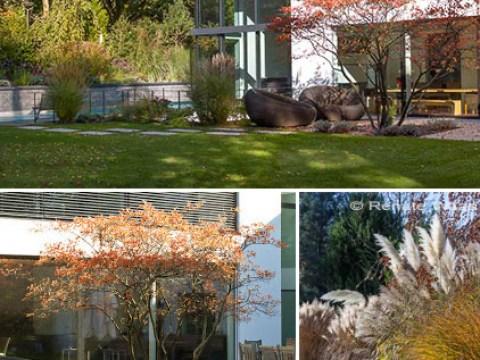 moderne gärten gestalten moderner garten mit gräsern, gartenplanung renate waas