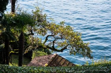 Villa del Balbianello, Como. 19 settembre 2014 - Nikon D810, 105mm ƒ/2.8 1/1250sec ƒ/5.6 ISO 800