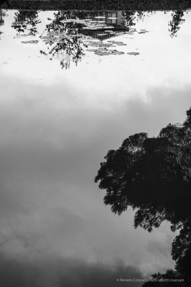 Alhambra, Granada, aprile 2015 - Nikon D300s, 45mm (16-85mm ƒ/3.5-5.6) 1/500sec ƒ/5.6 ISO 400