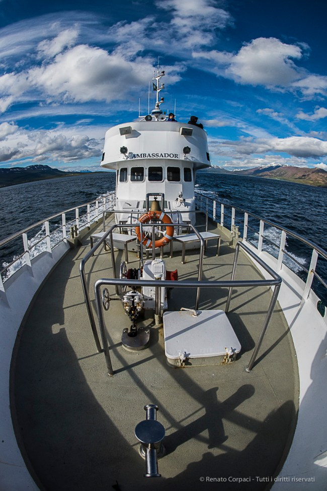"""The """"Ambassador"""" is one of the boats that take groups of enthusiasts to whale watching. Nikon D810, 16 mm (16.0 mm ƒ/2.8) 1/800 sec ƒ/22 ISO 1600"""