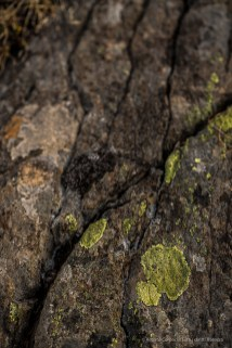 Post-glacier stone. Falesia dello Zoia. Nikon D810, 85 mm (85 mm ƒ1.4) 1/160 ƒ 2.5 ISO 64