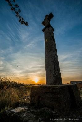The vineyard at sunset. The domain produces a finest Grès de Montpellier. Nikon D810, 14mm (14-24.0 mm ƒ/2.8) 1/160 sec ƒ/5.6 ISO 64