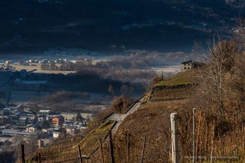 "A vineyard near Teglio, Valtellina. Nikon D810, 105 mm (105,0 mm ƒ/2.8) 1/160"" ƒ/9 ISO100"