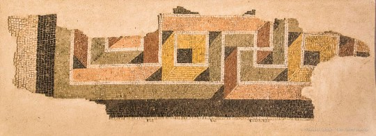 """Fragment of mosaic (end of I a.C. - beginning of I sec. d.C.) City museum of Santa Giulia, Brixia. Nikon D810, 24 mm (24-120.0 mm ƒ/4) 1/200"""" ƒ/4.5 ISO 6400"""