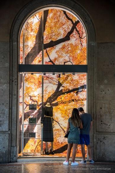 "Bergamo, Tiziana Fausti's boutique. Installation by photographer Clair Takacs. Annual Kermesse «I Maestri Del Paesaggio» 2016. Nikon D810, 66 mm (24-120 mm ƒ/4) 1/160"" ƒ/4 ISO 800"