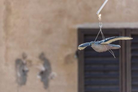 """San Gimignano, January 2017. Nikon D750, 400 mm (80-400 mm ƒ/4.5-5.6) 800"""" /5.6 ISO 400"""
