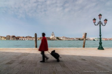 Same Old Story. A resident carrying a trolley with groceries in Venezia, Giudecca island, with the Basilica della Salute in the background. Nikon D810, 24 mm (24.0-120.0 mm ƒ/4) 1/25 ƒ/22 ISO 64.