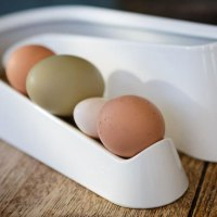 Giveaway – Omlet Kitchen Accessories RRP £50