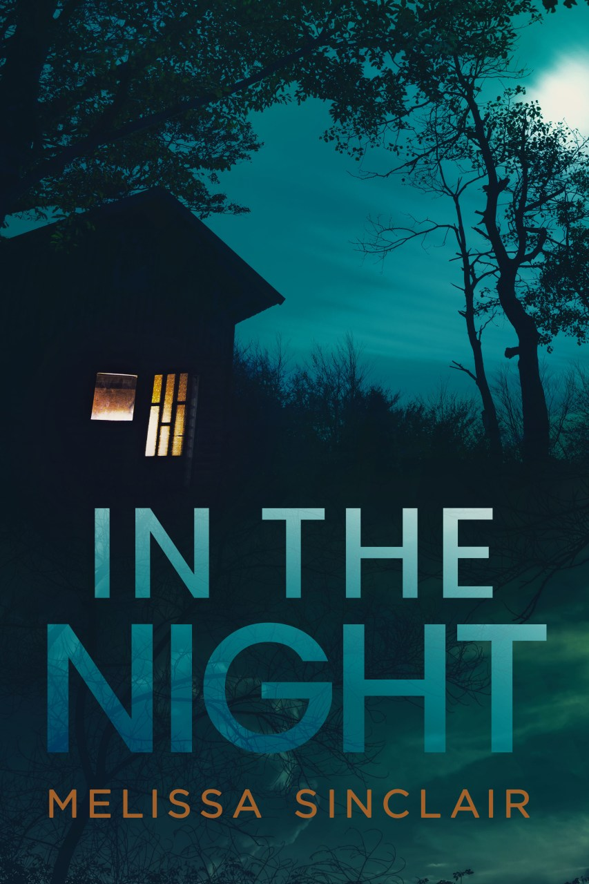 In the Night by Melissa Sinclair | Cover Design by Render Compose