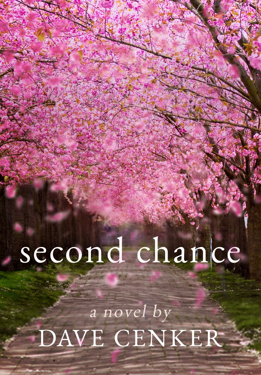 Second Chance by Dave Cenker