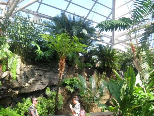 Tropical Pavilion
