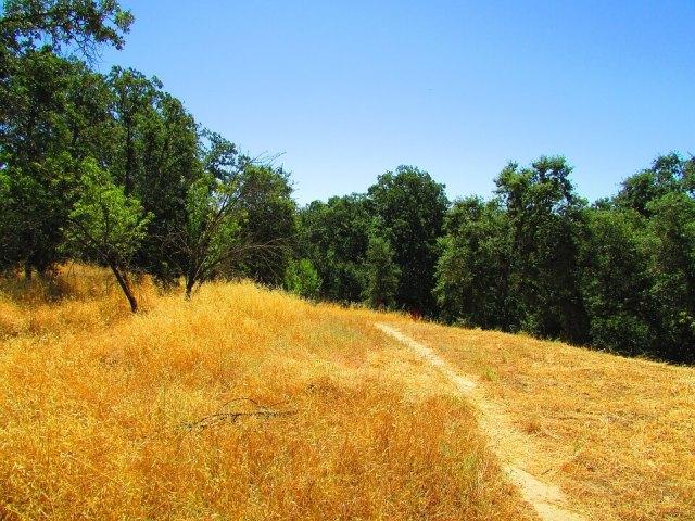 Grass valley California