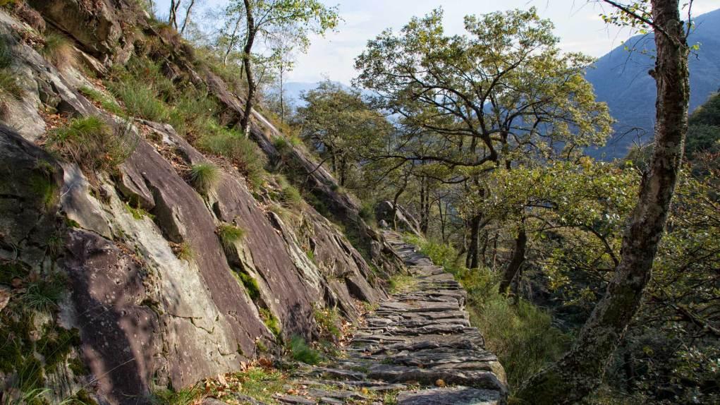 Weg zum Monte Zucchero