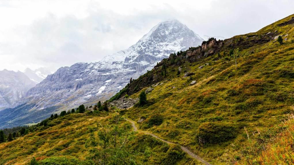Der Weg nach Alpiglen mit der Eiger Nordwand im Hintergrund