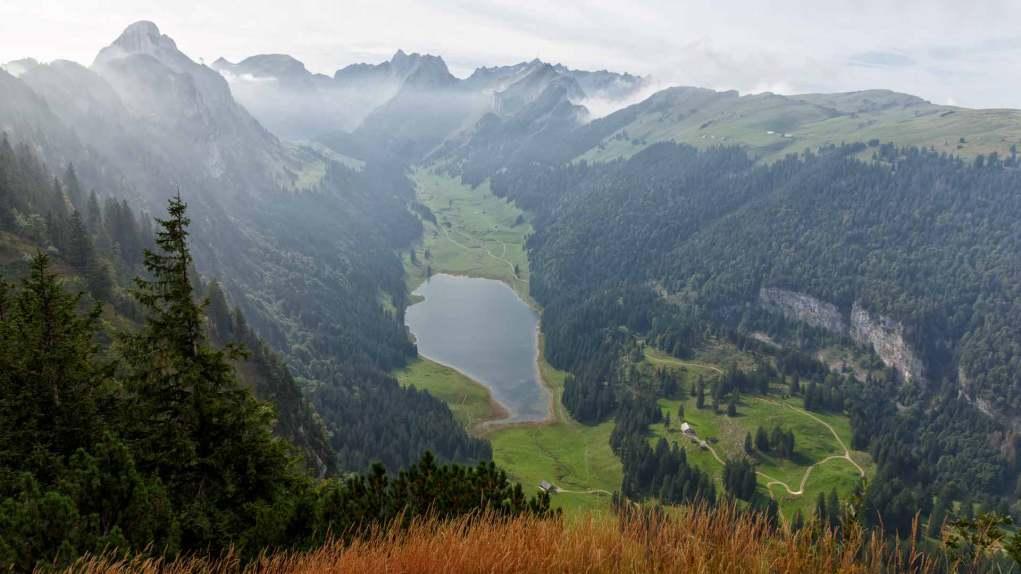 Blick in den Alpstein