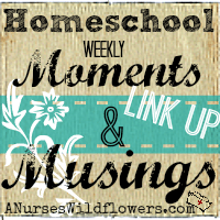 A Nurse's Wildflowers Homeschool Weekly Moments and Musings Link Up