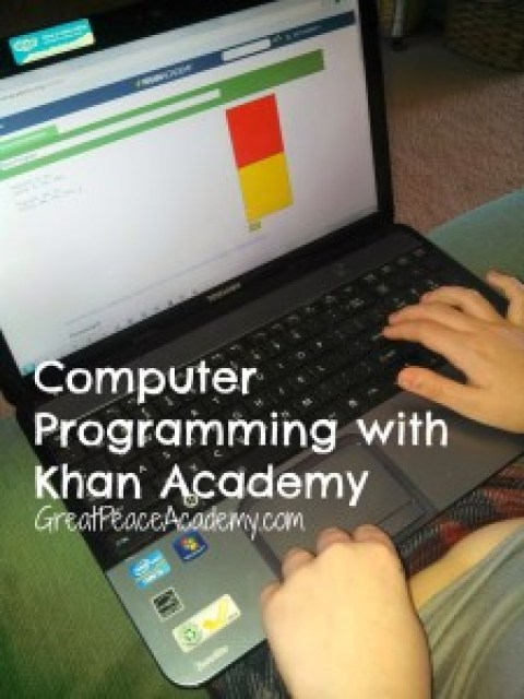 Computer Programming in Homeschool