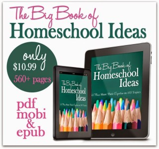 The Big Book of Homeschoo Ideas, find it at Great Peace Academy